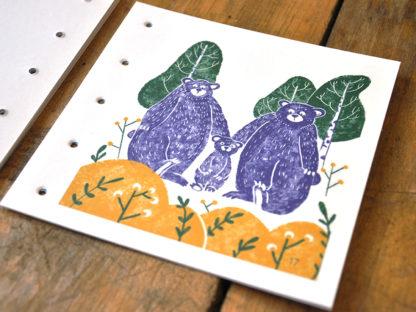 livres de jeunesse illustration page 17 - un ourson à Yellowstone - les minuscules